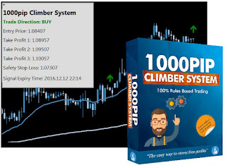 100% rule based trading system | 1000pip Climber System