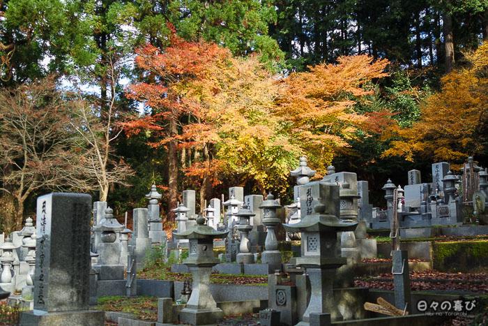cimetière daijoji vegetation automne