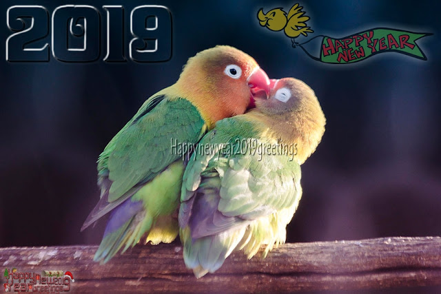 New Year 2019 HD Love Photo
