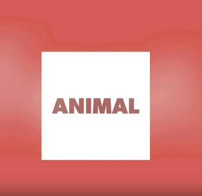 DJ Flaton Fox & Dorivaldo Mix - Animal