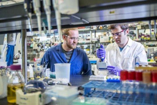 Sebastian Palluk (left) and Daniel Arlow of the Joint BioEnergy Institute (JBEI)