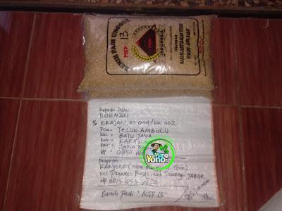 Benih Pesanan   ROHMAN Karawang, Jabar  (Sebelum Packing)