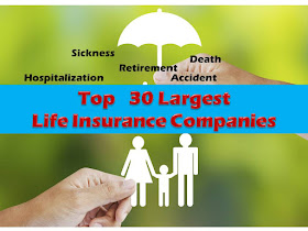 """Are you looking for an insurance company where you can buy a life insurance policy?  When choosing an insurance company to buy you life insurance policy, it is important to check the financial standing of the insurance company itself. Would the company be able to pay for the benefits as stated in your insurance policy? Or their financial standing is already compromised that you might end up not getting the benefits as stated in your insurance policy.   By checking the """"net worth"""" of the insurance company, you can at least have an idea if they have enough assets, to cover their liabilities. It also means, there is higher probability that they can pay for the claims of their insurance.  policy holders.      No one can really predict the future or expect things to be hassle or problem free. But we all want to have a little bit of assurance in case of contingencies. For example, a father who is the provider of the family hopes that in case something happens to him, his family can still manage well financially, pay for schooling, house rent, and buy their necessity.   This is the reason why, it is best for someone to get life insurance that is affordable and at the same time reliable.    We say reliable life insurance, because even insurance companies can go bankrupt. And before you claim your insurance, there is a chance they closed or filed bankruptcy.  In the Philippine government, the most common and affordable life insurance of most Filipinos is SSS. Still, not everyone has SSS. In fact, many SSS members right now fret that because of the increase of pension benefits of senior citizens or retired SSS pensioners, there might not be enough to pay their benefits and life insurance in their retirement age.        When choosing which insurance company is most stable, there are several things to consider. One of them is the net worth. This is how net worth is measured:  Net Worth= Assets- Liabilities  TOP 30 LIFE INSURANCE COMPANIES BASED ON NET WORTH Information from: De"""