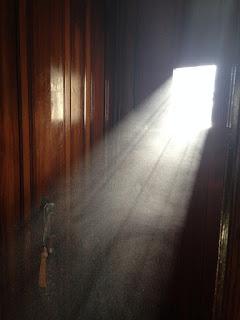 Espíritus en las sombras que rondan el mundo físico de los vivos.
