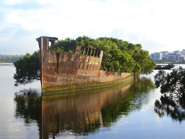 سفينة قديمة تعود لـ 102 عام في سيدني – استراليا