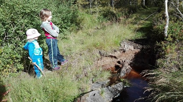 lapset metsätiellä
