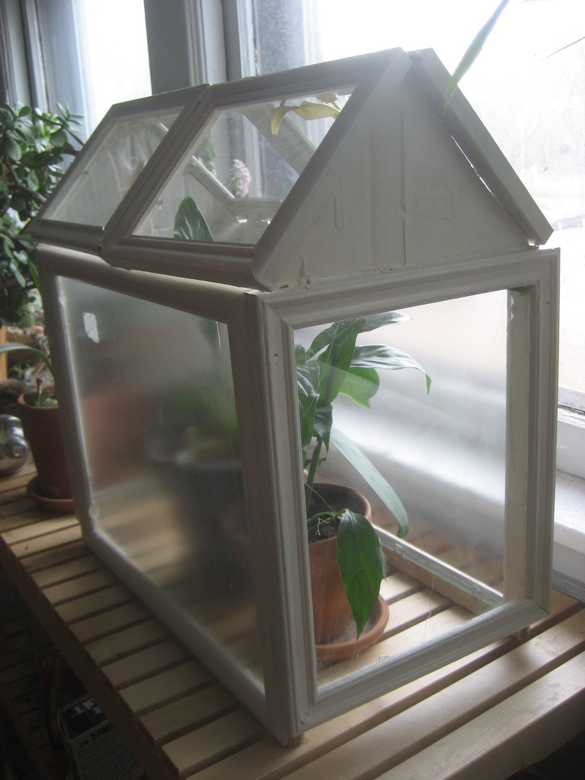 Diy Picture Frame Glass Chuck Does Art Diy Picture Frame Terrarium