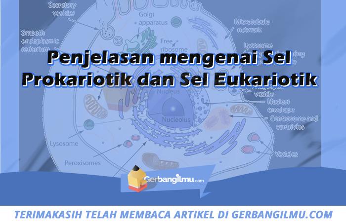 Penjelasan mengenai Sel Prokariotik dan Sel Eukariotik