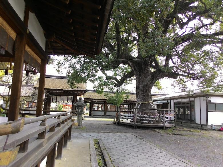 平野神社內