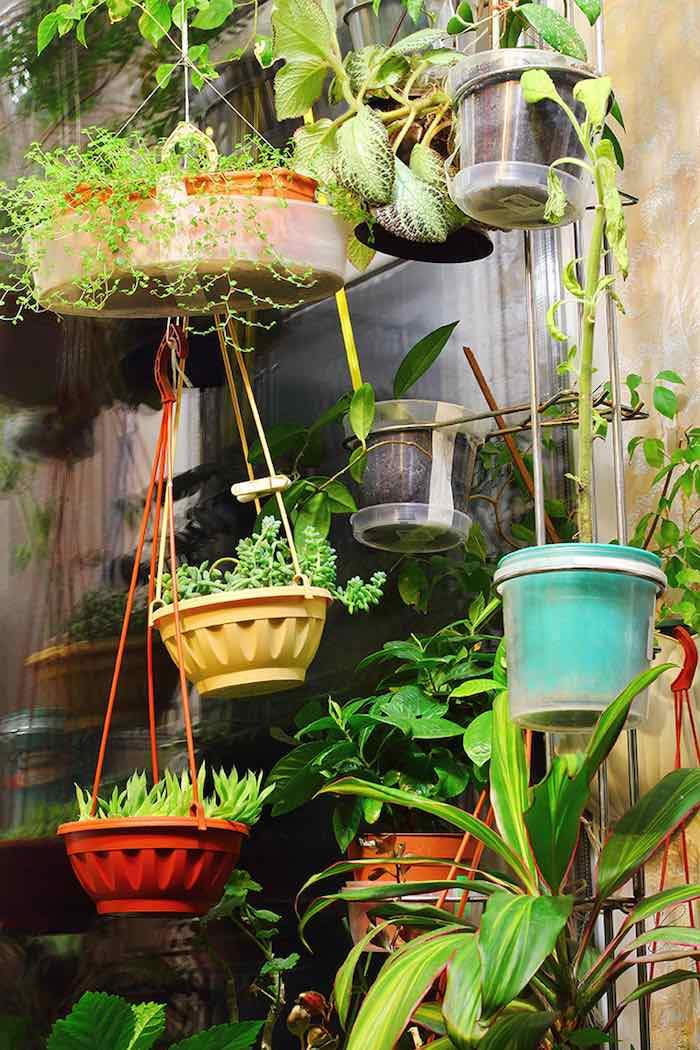 ideas diy para jardín o huerto vertical