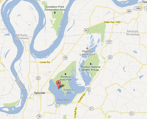 Reelfoot Lake Tennessee Map.Life Birding Photos And Everything Reel Foot Lake A Drowned Forest
