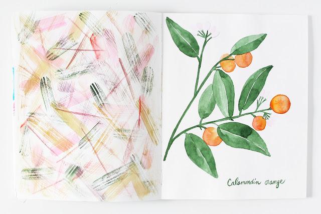 sketchbooks, 2x2 sketchbook, #2x2sketchbook, collaboration, painting, watercolor, Dana Barbieri, Anne Butera