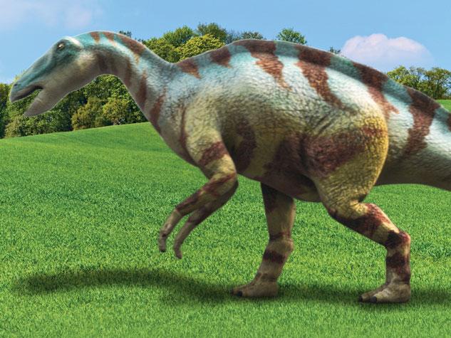 Pepe The Frog Cute Wallpaper Dino Dan Dinosaurs 2048