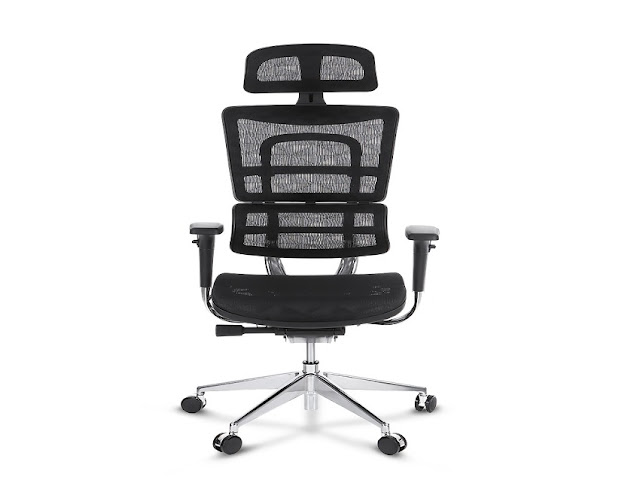 best buy ergonomic office chairs Portland Oregon for sale