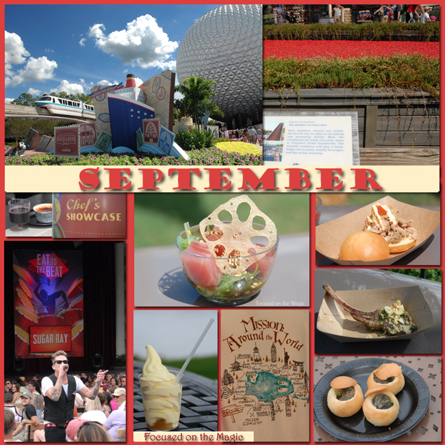 Disney Wordless Wednesday Blog Hop theme September