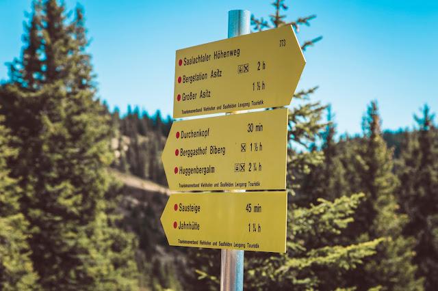 Saalfelden-Leogang - Saalachtaler Höhenweg 06