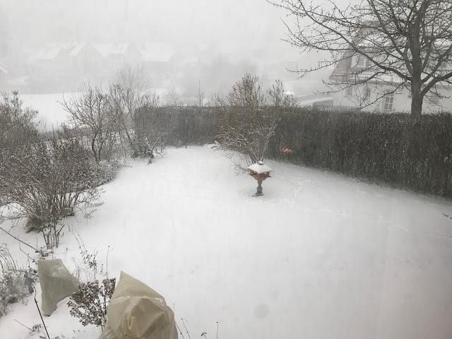 alle paar Stunden ein Schneesturm, das ist Januar (c) by Joachim Wenk