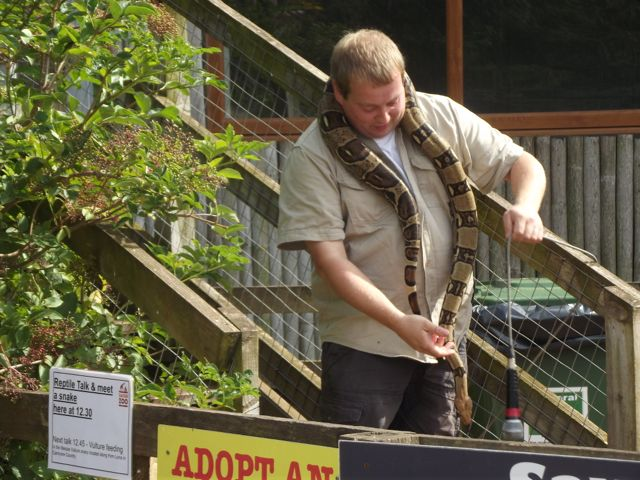South Lakes Safari Zoo snake talk