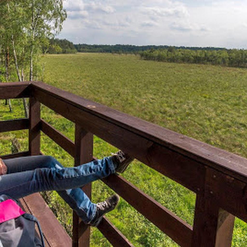 Jak zwiedzać Poleski Park Narodowy?