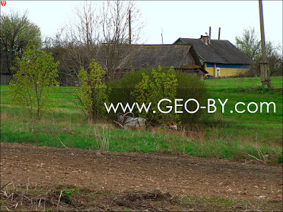 Телега в Грозовке