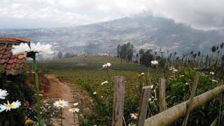 Menikmati  Kesejukan Posong, Wisata Alam di Lembah Sindoro, Temanggung