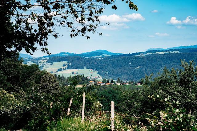 Wandertrilogie Allgäu  Etappe 38 Weiler-Scheidegg-Lindenberg  Wasserläufer Route 10
