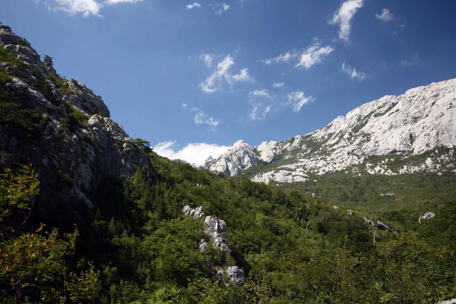 Blick zu den Bergen