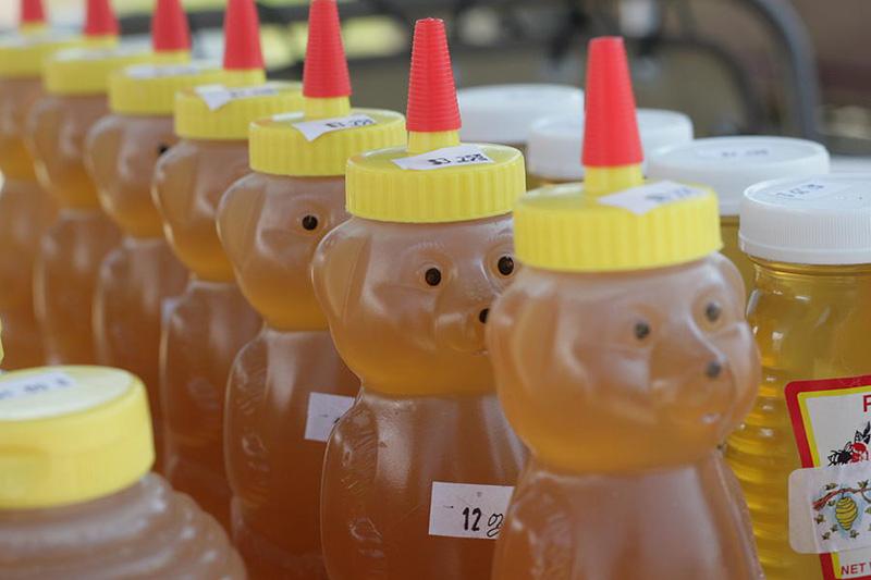 Honey Bear photo by Eric Turner