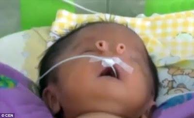 Bebê peruano