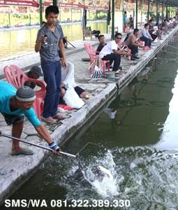 Essen Tenggiri Ikan Bawal Kilo Gebrus