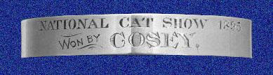 Silver collar for Cosey the cat
