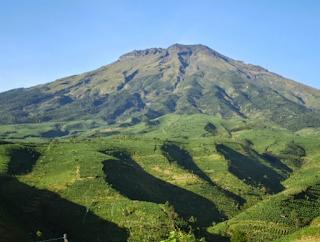 Tips Mendaki Gunung Merbabu