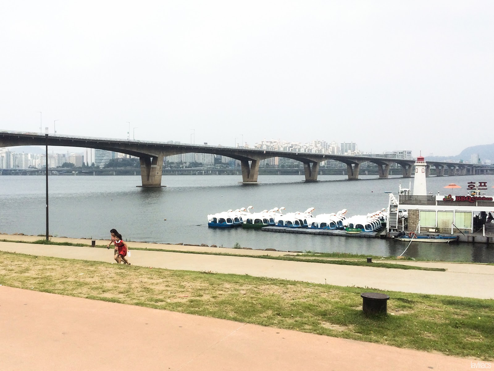 Seoul, Korea - Summer Study Abroad 2014 - Yeouido Park - Han River - swan pedal boat area