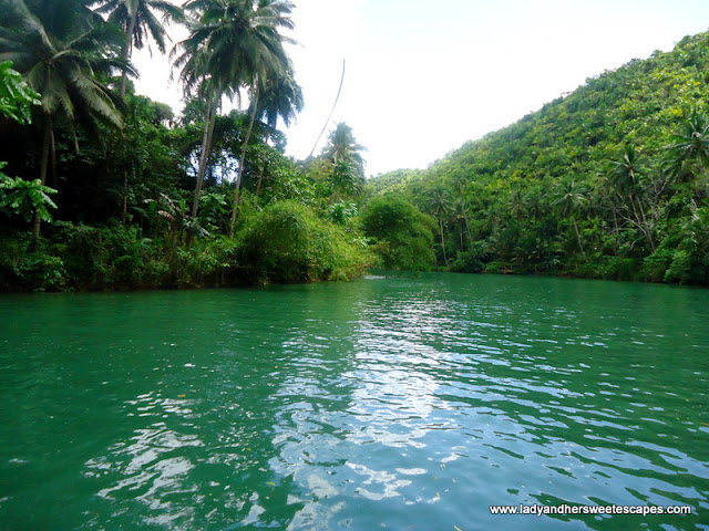 Clean River in Loboc Bohol