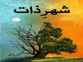 shehr e zaat novel