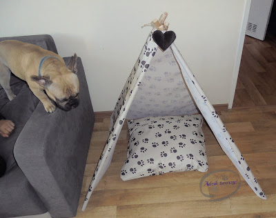 tipi dla psa instrukcje szycie