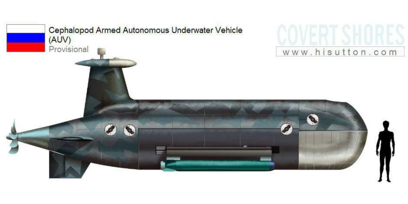 Kapal selam nuklir tanpa awak Cephalopod akan menjadi pembunuh kapal selam