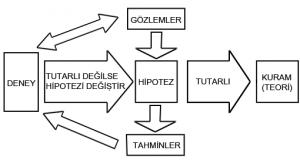 Bilimsel Araştırma Teknikleri