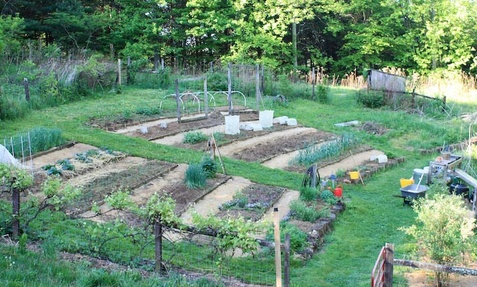 Maryu0027s Heirloom Seeds