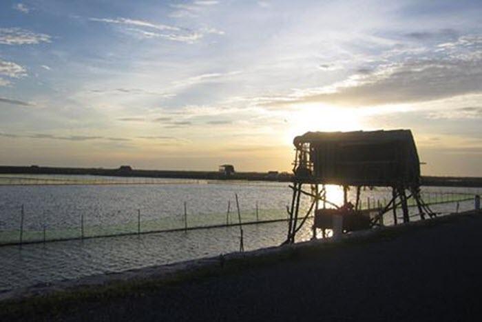 Khám phá vùng lõi khu dự trữ sinh quyển thế giới ở cửa sông Hồng -6