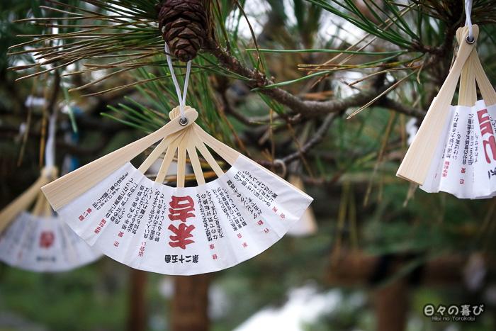 omikuji éventails suspendus aux branches d'un pin, temple Chion-ji, Amanohashidate, Kyoto