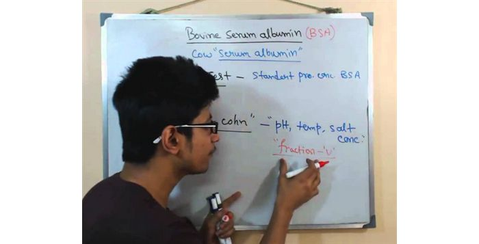 Serum albumin ( BSA bovine serum albumin)