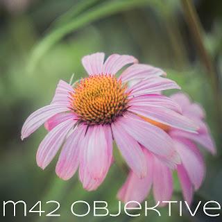https://isabelle-fotografiert.blogspot.com/2018/07/m42-alte-objektive.html