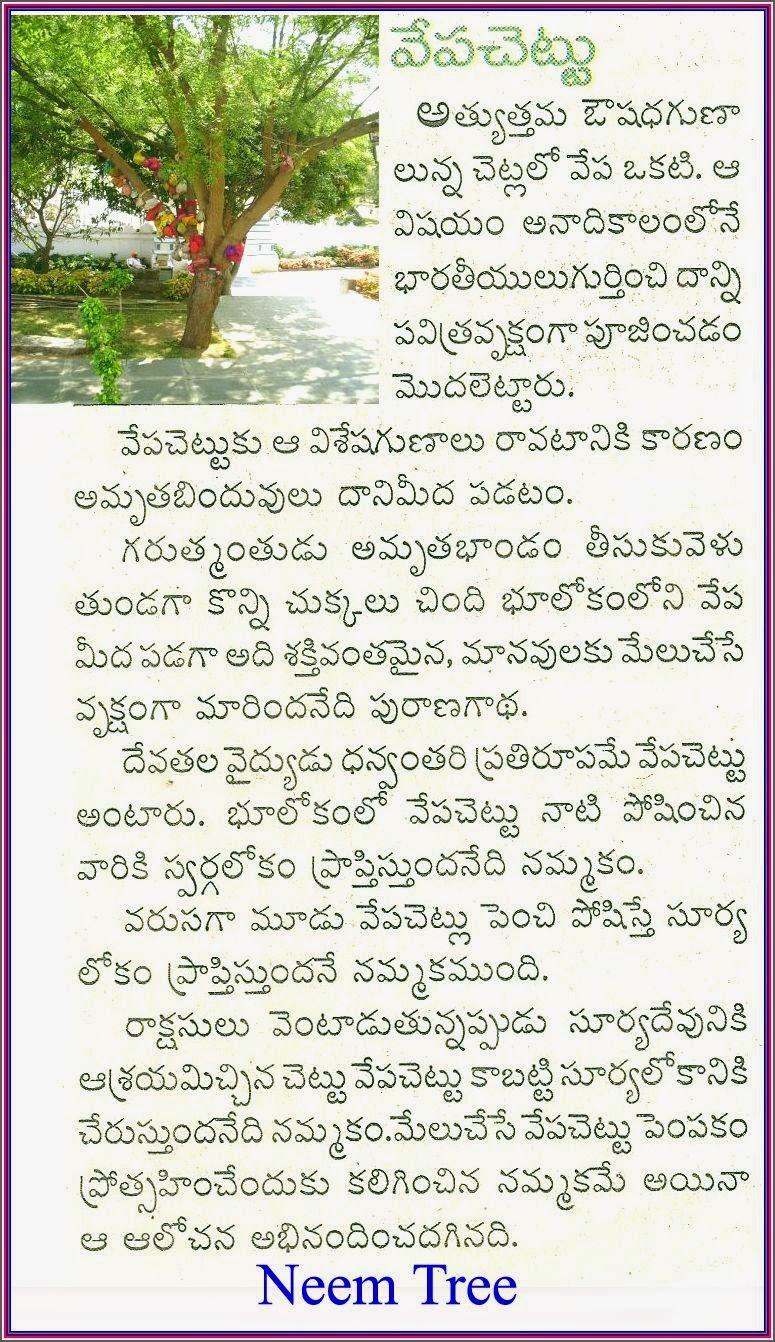 golconda ft article during hindi