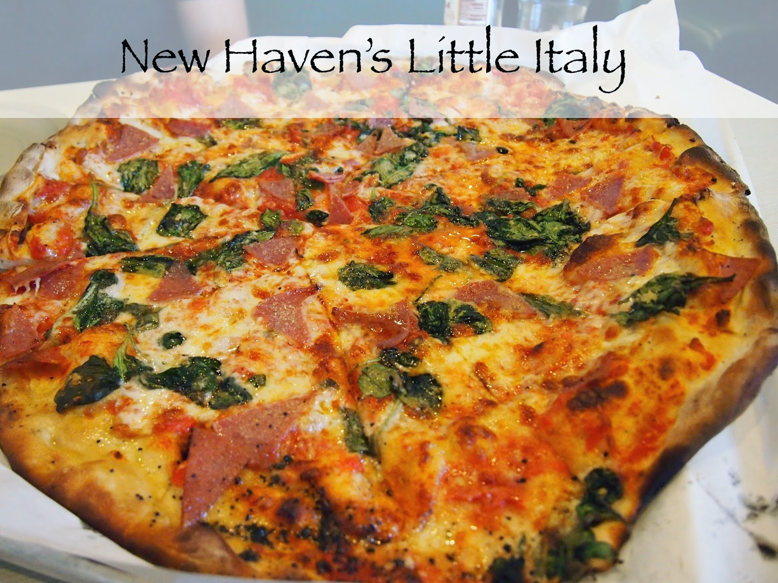 pizza in new haven connecticut