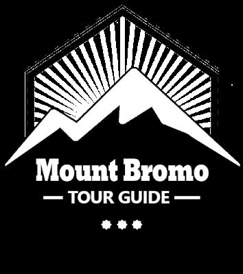mt bromo tour guide