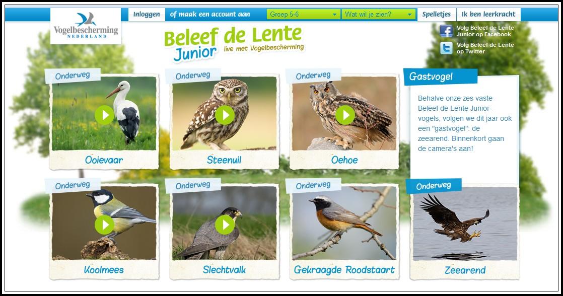 http://www.beleefdelentejunior.nl/