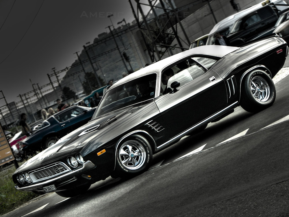 American Muscle: American Muscle's