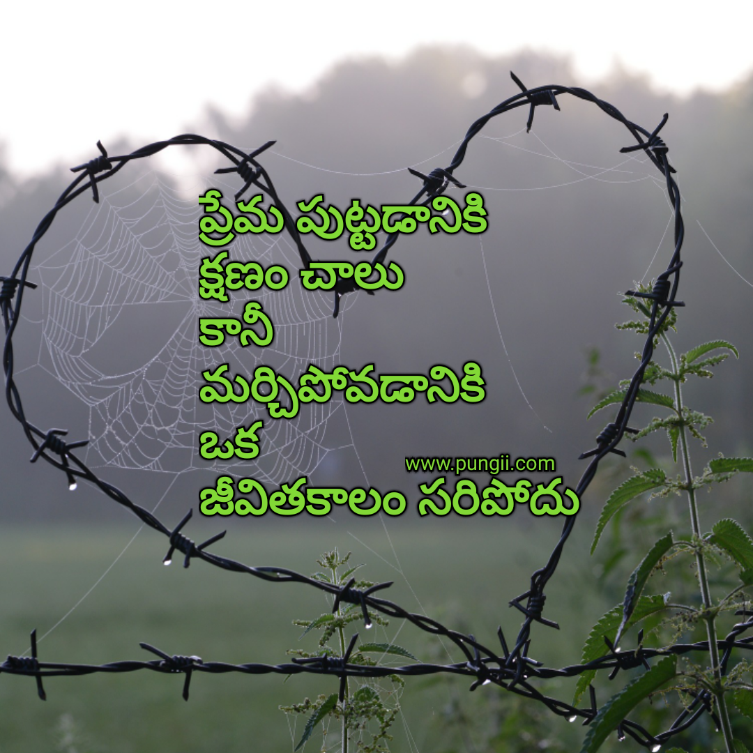 Love Images In: Heart Touching Love Quotes In Telugu