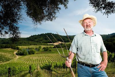 Tips Investasi Tanah Kebun Sebagai Lahan yang Menghasilkan